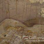 Amarone_Bordeaux_Leather_Close_1